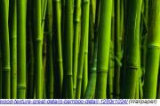 free_3d_textures
