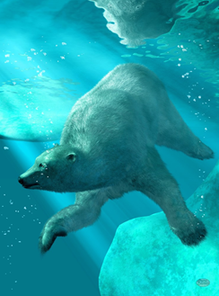 polar_bear_under_water