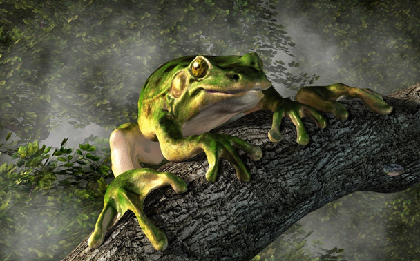 smiling_frog_