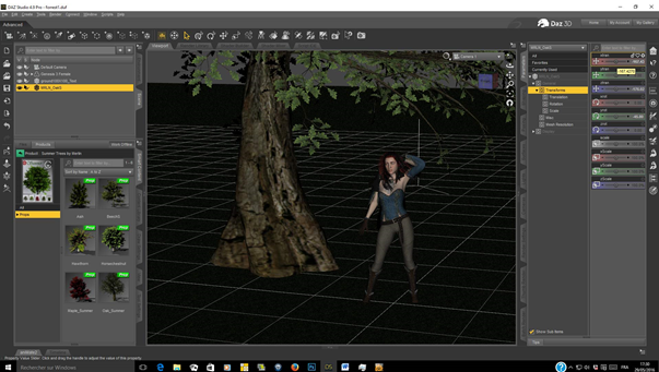 A_walk_in_the_forest_3d_3